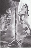 Harry Potter and Voldemort WIP 4 Pencil Drawing by MelieseReidMusic