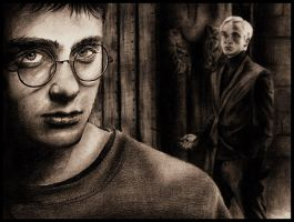Harry - Draco by Touya-shi