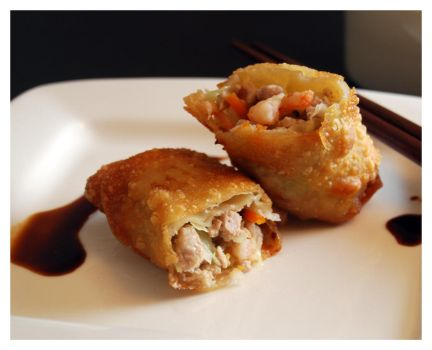 Egg Roll I by cb-smizzle