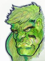 Hulk in copics by kanderson137