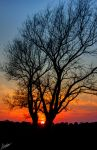 Westwood sunset by GraphicalHD