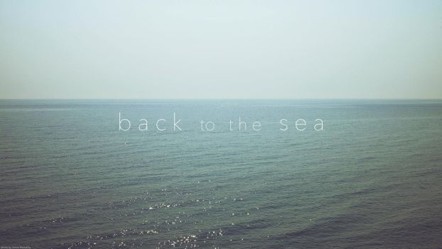 back to the sea by Zim2687
