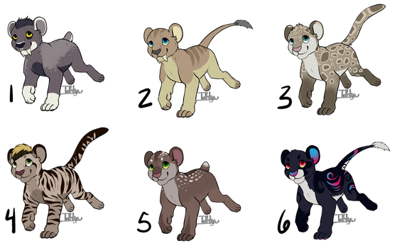 Feline Cubs - Offer To Adopt [ALL GONE] by MagpieHyena