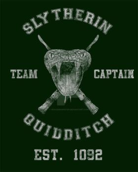 Slytherin Quidditch by spacemonkeydr