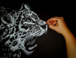 Leopard by Artistic-Sarah