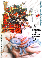 Xolotl and Axolotl by XSol-StudiosX