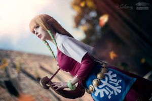 Zelda - Skyward Sword III by Calssara
