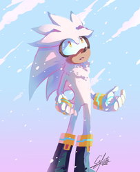 Silver the hedgehog snowfall by Calista-222