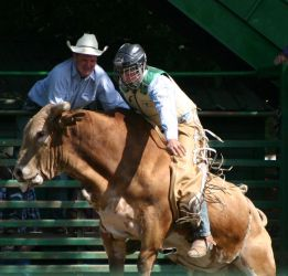 Rodeo 02 by pegrowe62