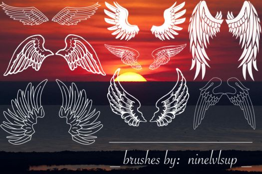 Wings Brushes by ninelvlsup
