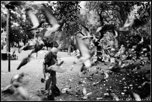 The Bird Man by SnipePhotography