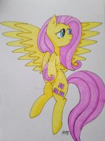 Fluttershy (Gift part 1) by Elmer157Typhlosion
