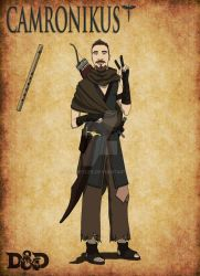 Camronikus the Human Rogue by SethEyles