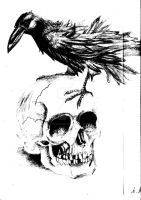 The Crow and the Skull by DarkAngel3090