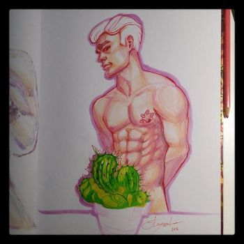 Topless Cactus Study by pauscorpi