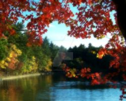 Autumn at Walden Pond by kalliope94041