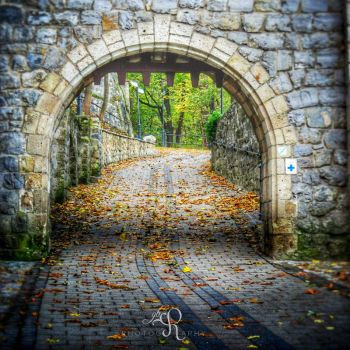 Gate for the Autumn by ReBri