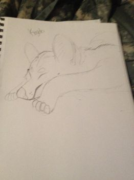 Drew a picture of Kiaydei Sleeping. by Demintion