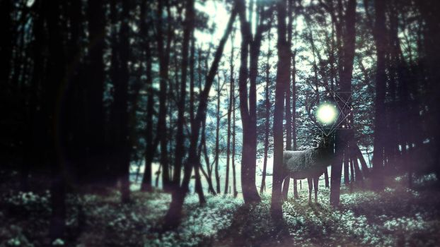 Guardian of the woods by ViDesigns