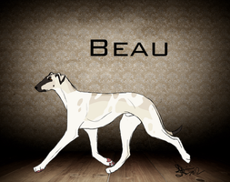 JK Everything is sound- Beau. by joesse