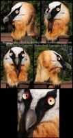 Kleiveer the Bearded Vulture Mask by Nambroth