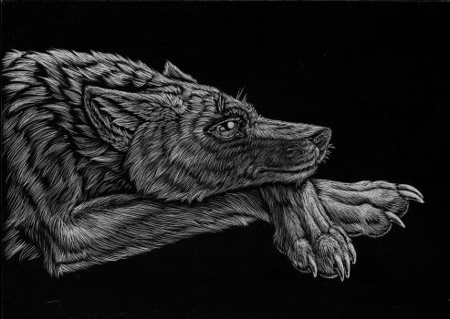 Wolf Character - Scratchboard by Jianre-M