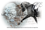 Mr. Conclusion by RoyalEquineDesigns