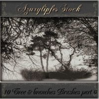 tree_branches brushes part 6 by AzurylipfesStock