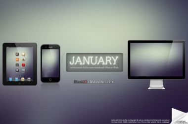 January-2013 by BlankID