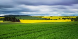 Colors Of Nature II by MarcoHeisler