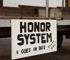 Produce Stand - Honor System by lupiniastudios