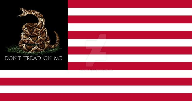 DON'T TREAD ON ME FLAG No 4 By: S. R. Barlow by StephenBarlow