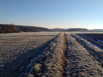 cold morning by Mittelfranke