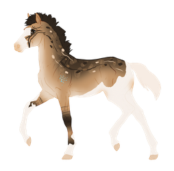 N3789 Padro Foal Design for Chestnut-Sunshine by Mimi-McG