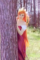 Giselle - Enchanted cosplay 2 by ShamanLaf