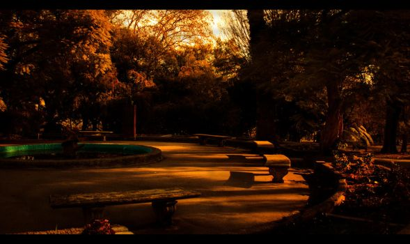 In autumn the leaves turn by 61x