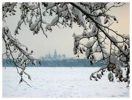 Winter in Cracow by waflar
