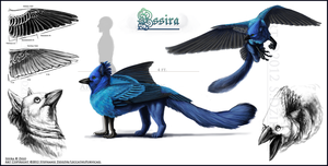 Issira - Reference Sheet by LeccathuFurvicael