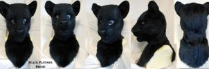 Black Panther Head Turnaround by Magpieb0nes