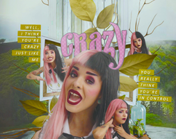 Crazy {chapter} by shad-designs