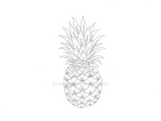 Pineapple by Anqueetas