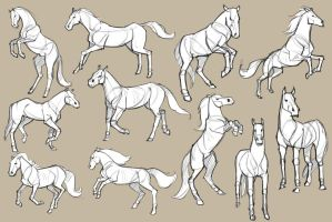 Study - Horse 4 (poses) by georgecatalin93