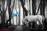 Horse and Butterfly by cuddlykittens123