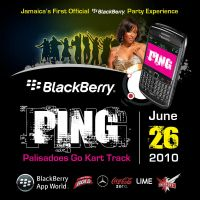 PING teaser flyer by owdesigns
