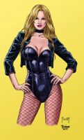 Black Canary_Colored. by Troianocomics