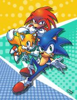 Team Sonic by sonicboom35