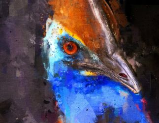 Cassowary by Cr8ivDigitalPainting