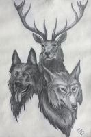 The Marauders by ElizabethHolmes