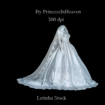 Exquisite Wedding Gown by PrincessInHeaven