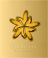 facelifts by zamuz